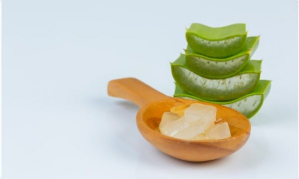 Aloevera-home remedies for pile pain